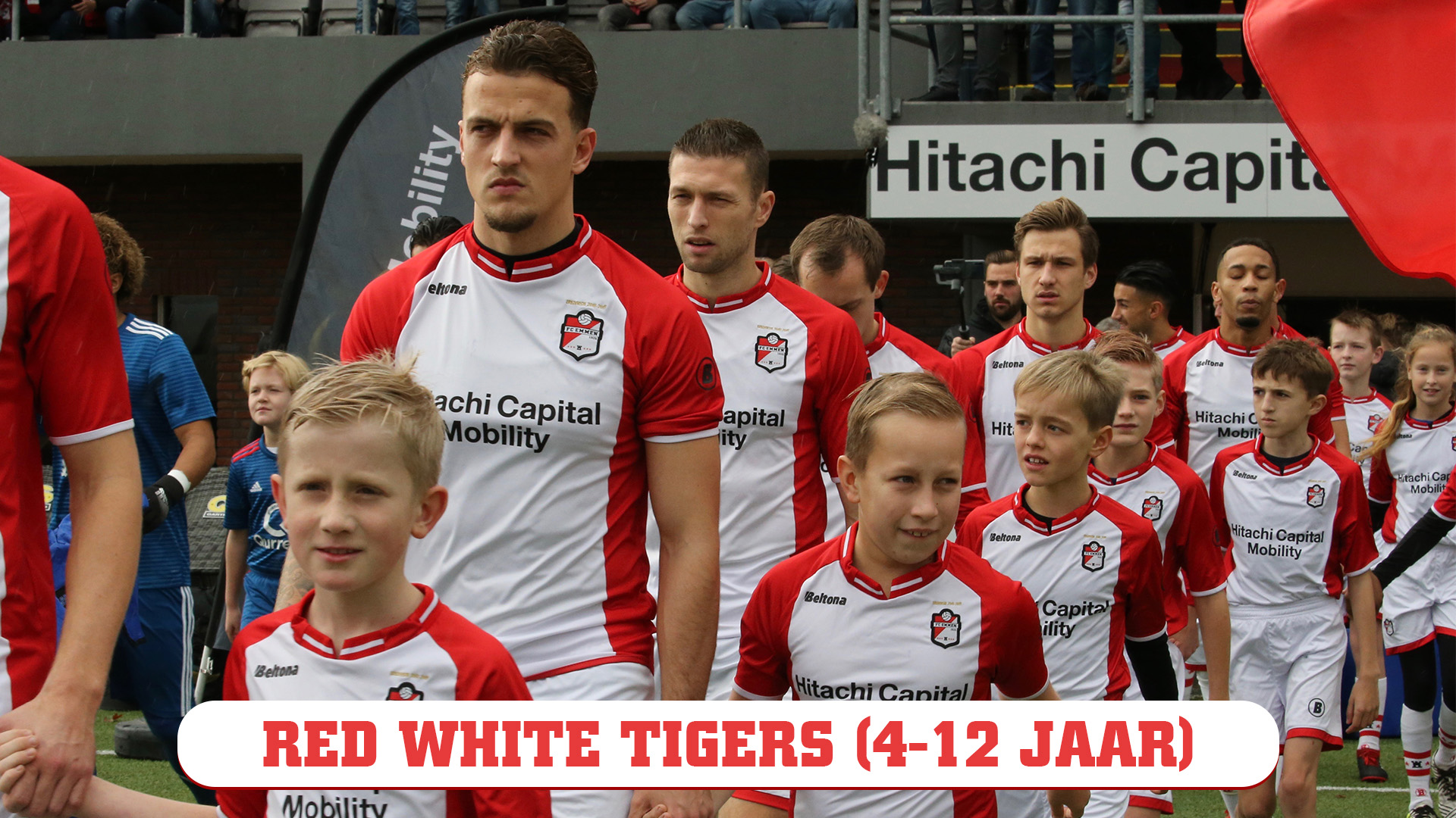 Red White Tigers image
